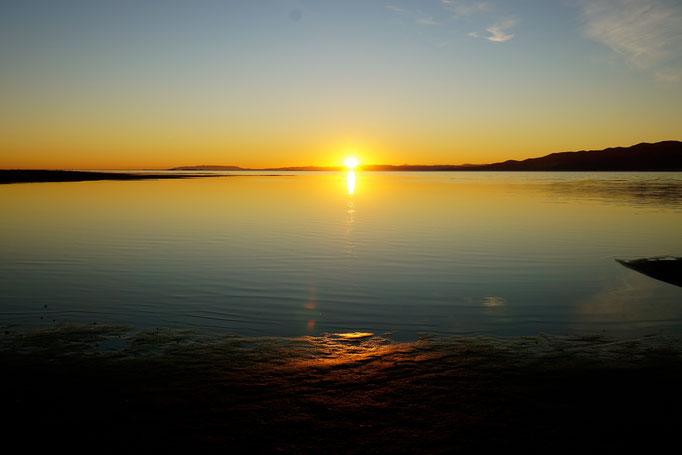 Dawn in Ebre Delta