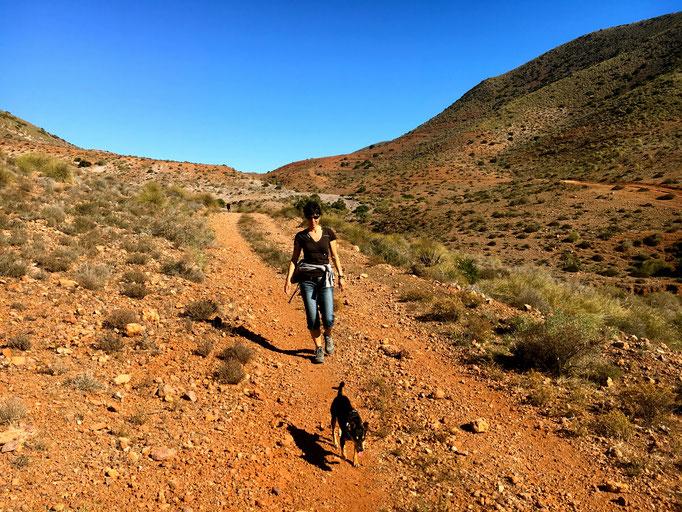 Wanderung zur Caldera de Maiada de Redonda