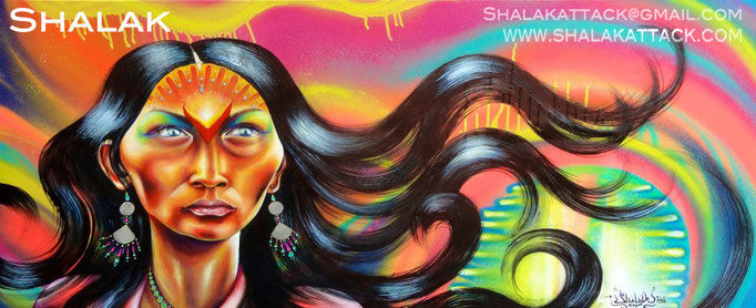 """""""Aparecida""""  by Shalak.  Mixed media on canvas. 2011  (Sold to Private Collector - Sao Paulo, Brazil)"""