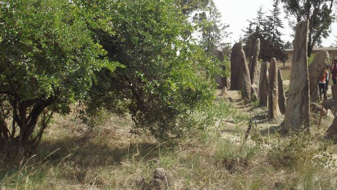 Champs de Stèles de Tiya