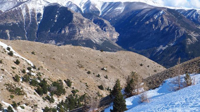 Entre Vachière et Beauvezer ; Alpes du Sud. Voyage Max de Nature