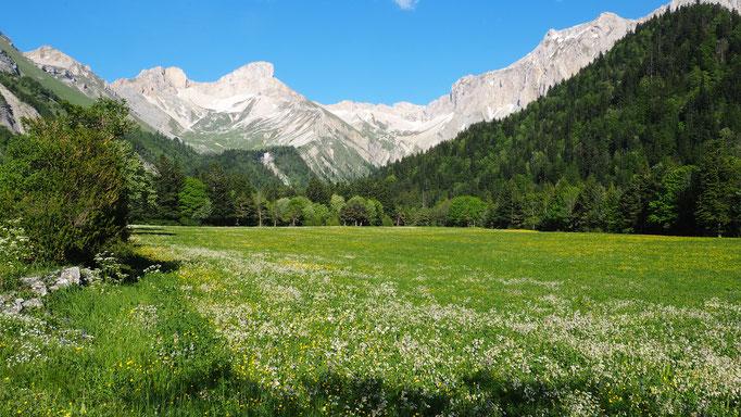 Randonnée au col du Charnier ; Vallon de la Jarjatte ; Dévoluy. Voyage Max de Nature