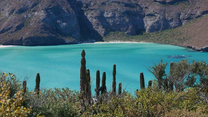 Balandra ; Basse-Californie ; Mexique. Voyage Maxime Lelièvre
