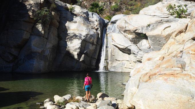 Canyon de la Zorra ; Basse-Californie ; Mexique. Voyage Maxime Lelièvre