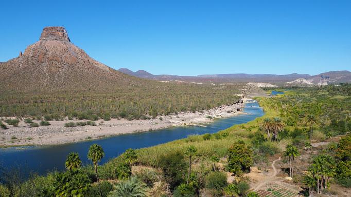 Région de Comondu ; Basse-Californie ; Mexique. Voyage Maxime Lelièvre