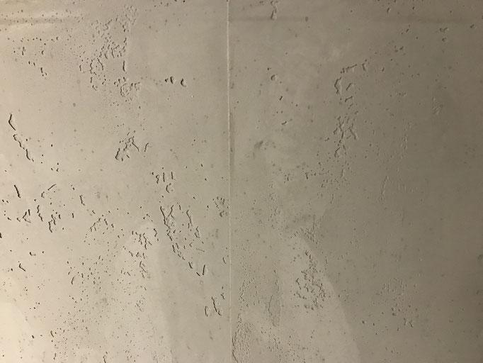 Steinputz Textur3