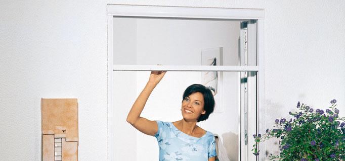Insektenschutz für Fenster                                                              (Bildquelle: mhz)