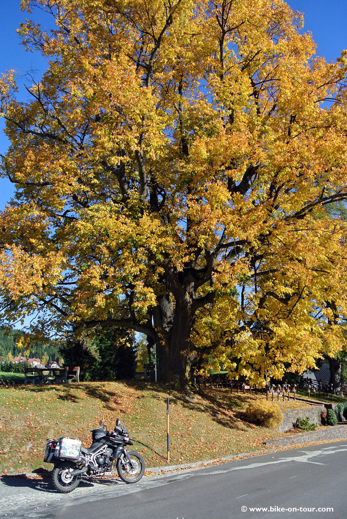 St. Jakob im Walde, Steirisches Joglland, Wechselgebiet