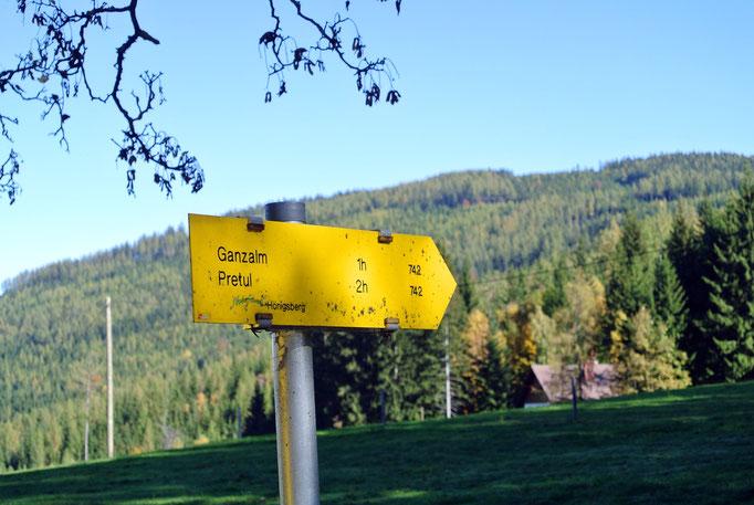 Ganzalm/Pretul-Alpe