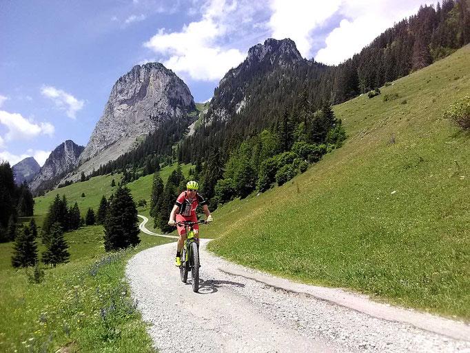 Mit dem E-Mountainbike unterwegs im Simmental