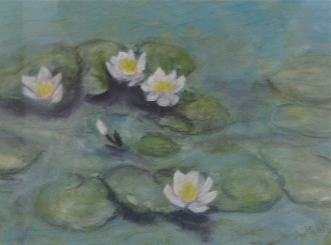 Lillies N/A