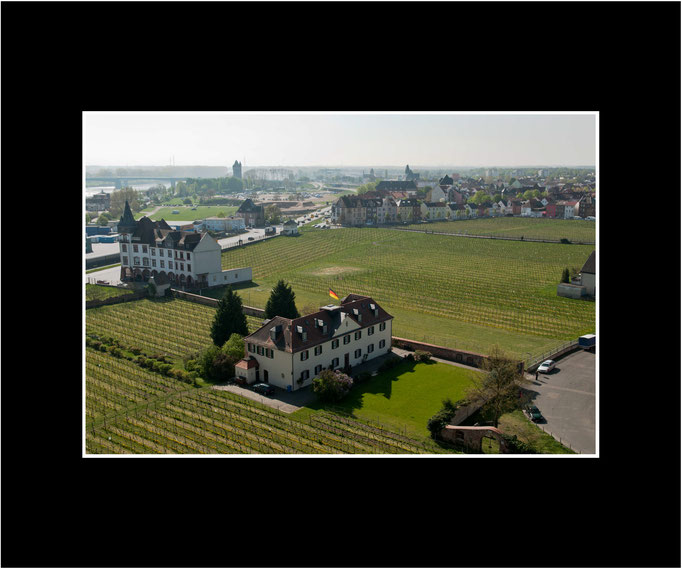 FW110 Weinberglage Liebfrauenmilch Kirchstück (Kurt Jost)