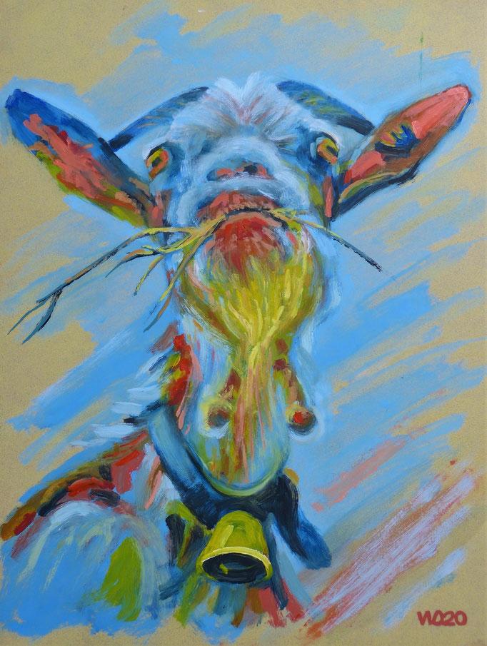 Arrogante Ziege - 45 x 60 cm  Öl auf 3mm MDF-Platte    150.00 €
