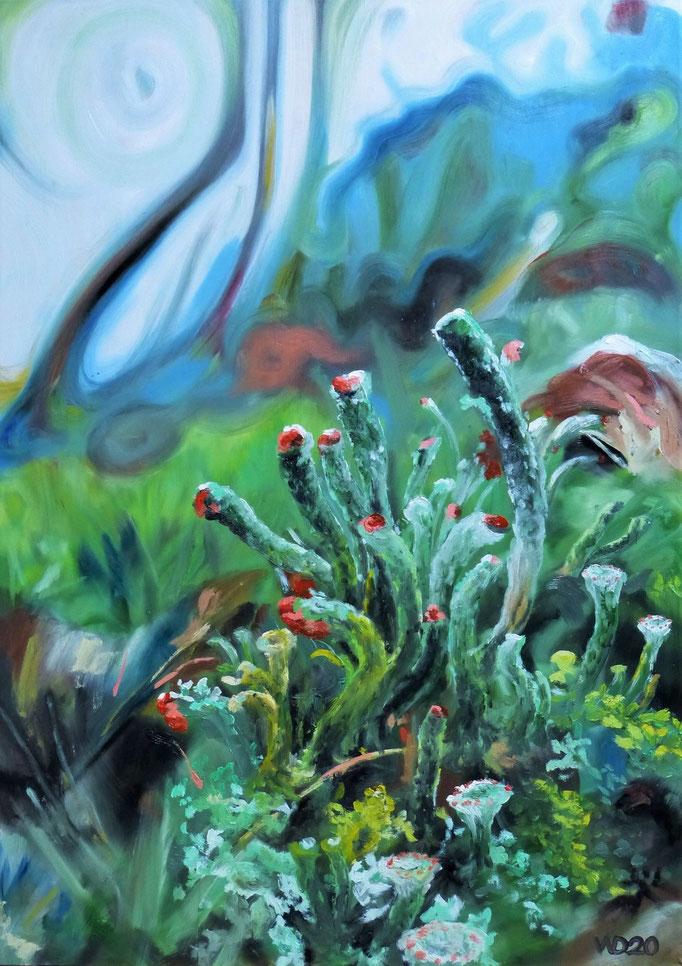 Cladonia polydactyla - 50 x 70cm  Ölfarbe, 3mm Sperrholz-Platte  150.00€
