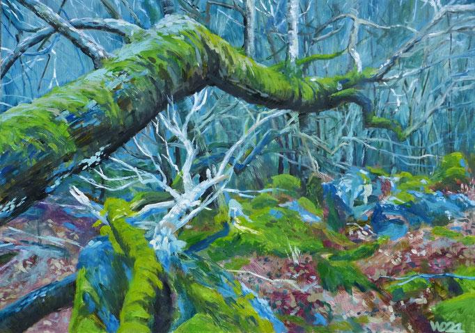 Hinterwälder  - 50 x 70 cm  Ölfarbe, 3mm MDF-Platte  160.00€