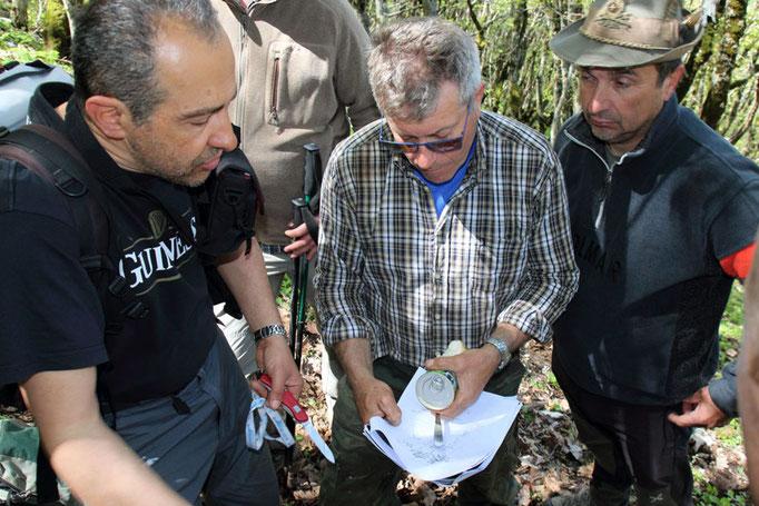 ANA San Giorgio - Golico, si analizzano le piantine