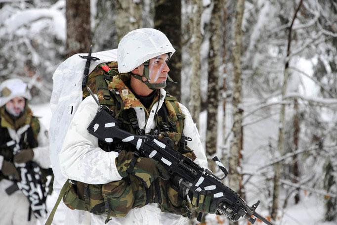 Alpini - Esercitazione in ambiente invernale