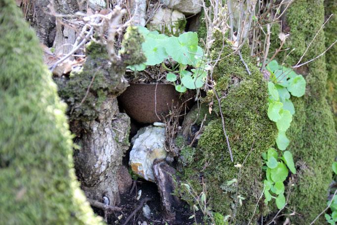 ANA San Giorgio - Golico, l'elmetto in mezzo alla vegetazione