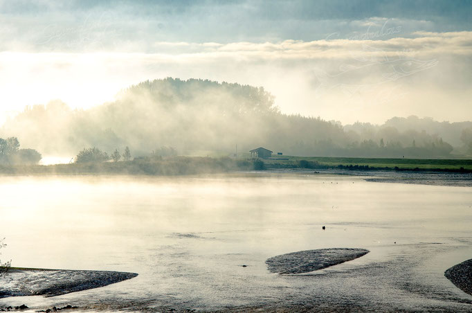 Nebel in der Pütte
