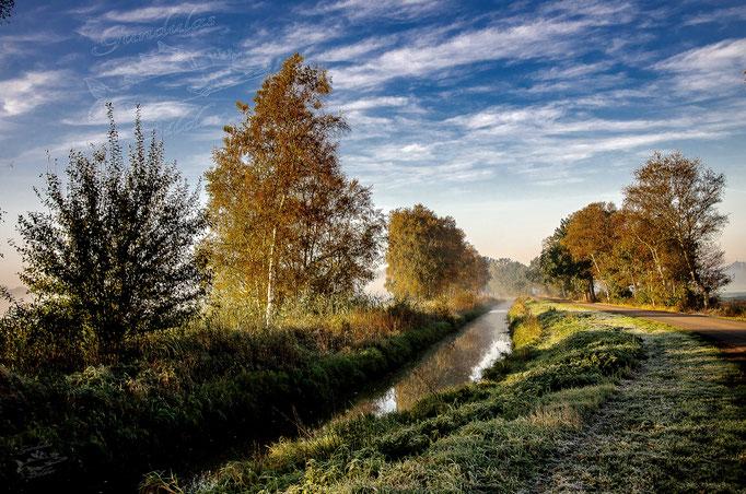 Herbst am Ihlbecker Kanal 20191007_1587