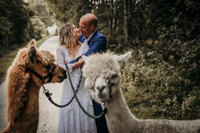 Boho Hochzeit Norddeutschland Hochzeitsfotograf Alpakas