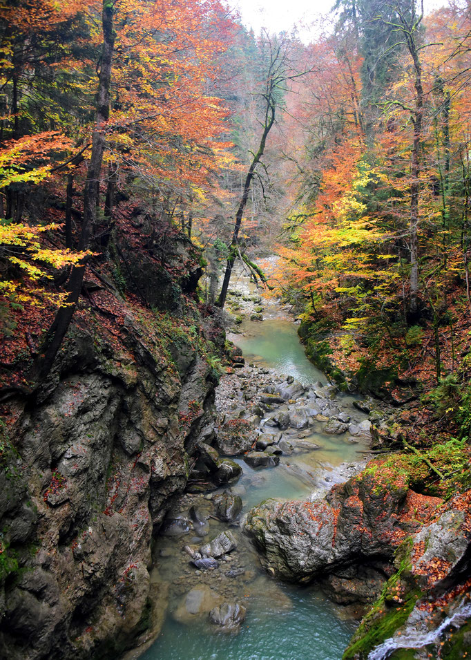"Foto: Andreas Ender, photo-art+painting | Limited Edition of 99 | 50x70cm | je 144,00€ | ""Rappenlochschlucht Dornbirn"""