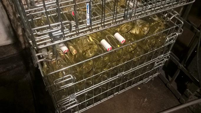 Dann Verschließen der Frizzanteflaschen mit Drehverschluss und Lagerung in der Box