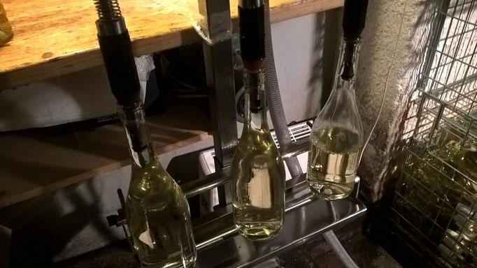 Dann normale Flaschenfüllung