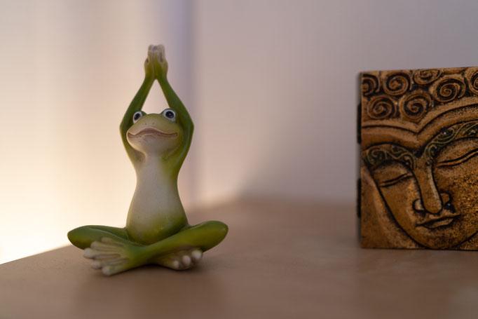 mein Yoga-Frosch