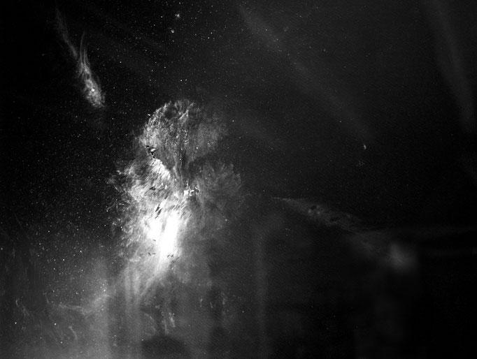 Chevêche d'Athéna, photographie numérique noir et blanc, 80x115 cm, 2016.