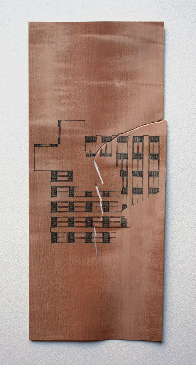 Encre sur poirier, 30x20, 2012.