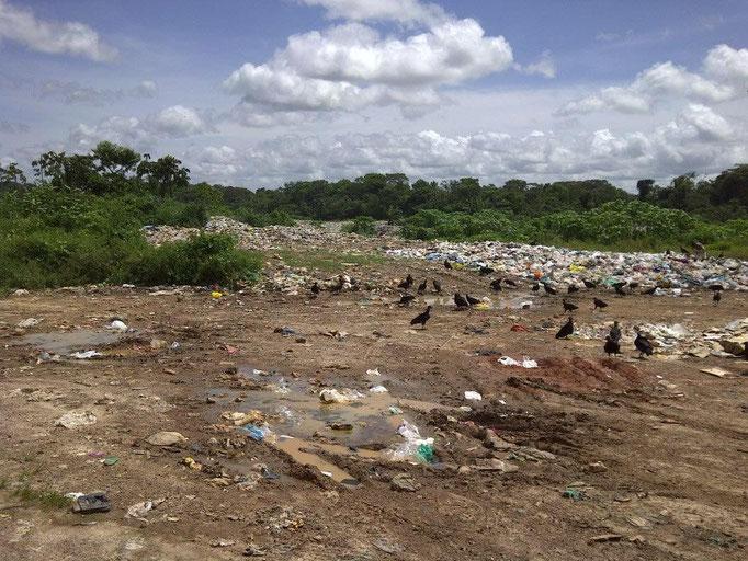 the waste dump of Castanhal