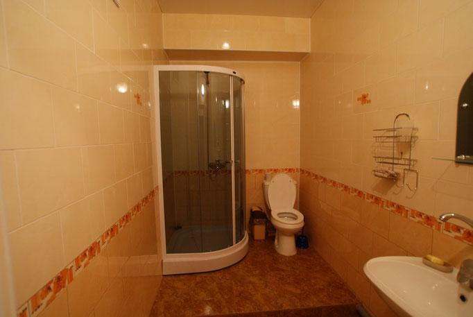 Общий туалет на нижнем уровне, здесь же стиральная машинка, гладильная доска и утюг !