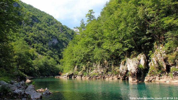 Tara (Montenegro)