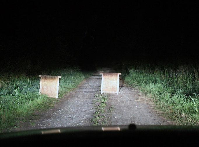 Traversant un sentier de nuit.