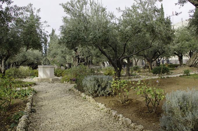 Garten Gezehmane