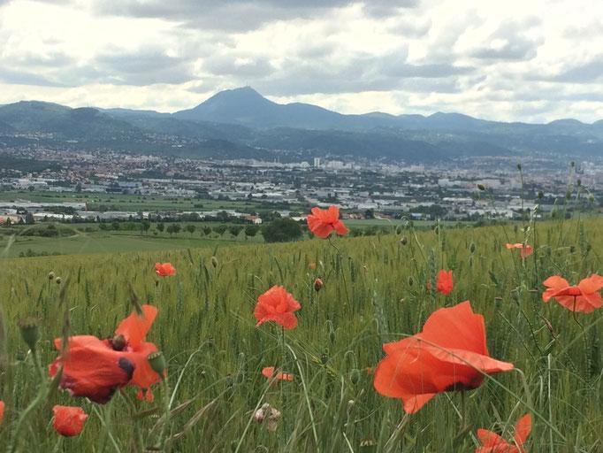 La vue sur Clermont-Ferrand depuis le plateau du Trap, juste derrière les chambres d'hôtes de La Villa Victoria Auvergne.