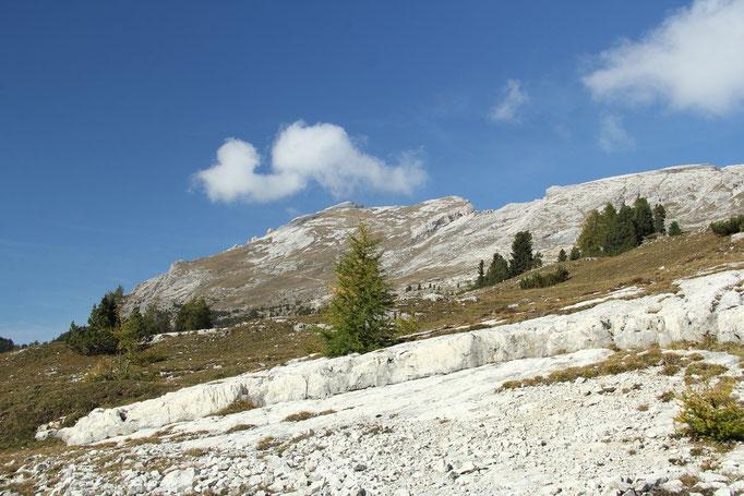 Pragser Dolomiten, An der Plätzwiese