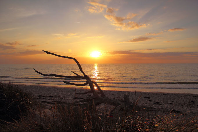 Sonnenuntergang am Weststrand/ Darß