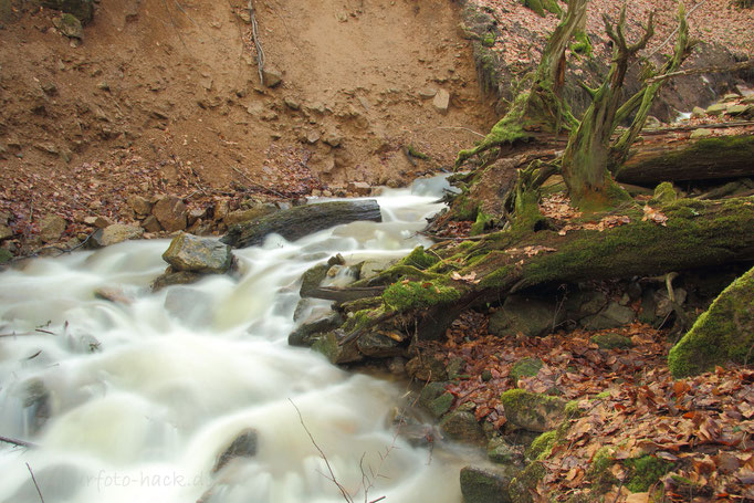 Der Hanggraben bei Sosa
