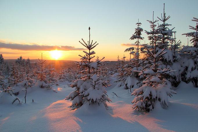 Sonnenuntergang auf dem Auersberg