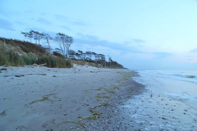 Blaue Stunde am Weststrand