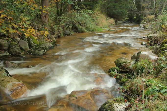 Herbstzeit an der Großen Bockau