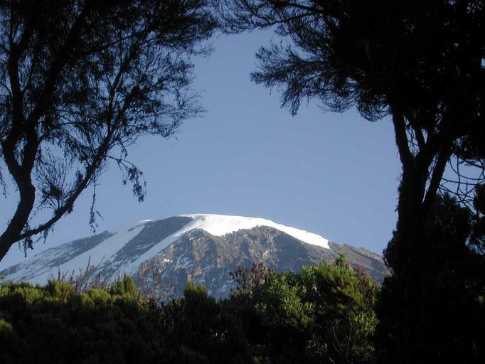 Blick auf den Kili vom Mweka Camp, Kilimanjaro besteigen, Detailinfos Kilimanjaro, Auf den Kilimanjaro, Bergtour Kilimanjaro