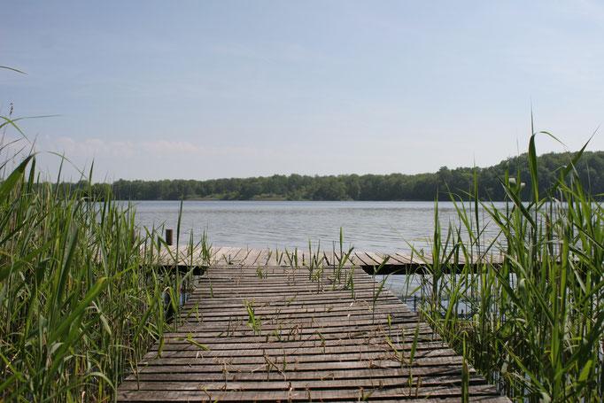 Dutzower See in  Kneese im Landkreis Nordwestmecklenburg in Mecklenburg-Vorpommern