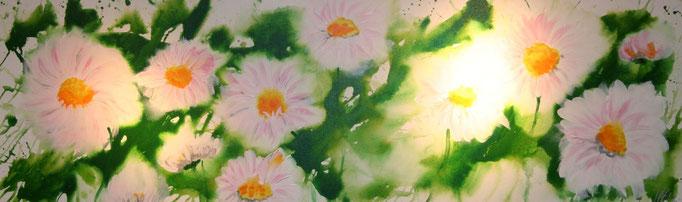 Gänseblümchen 50 x 140 cm