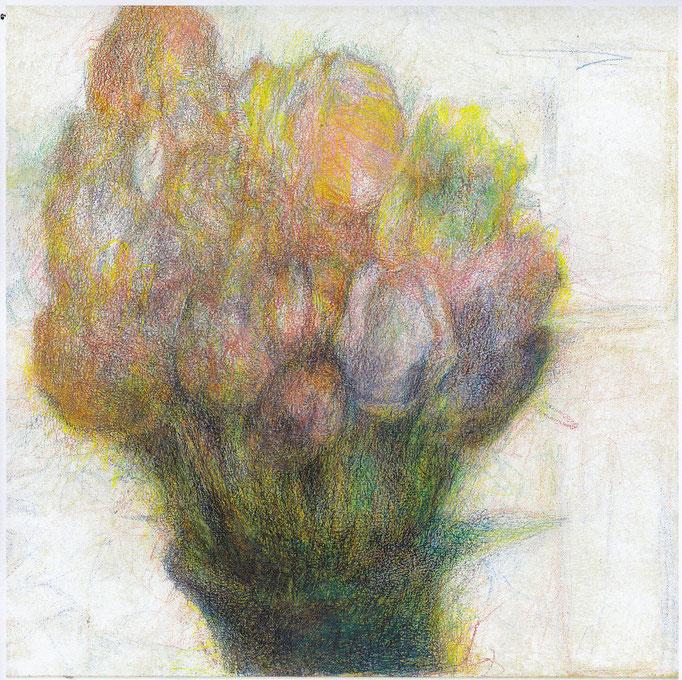 Tulpen 2020