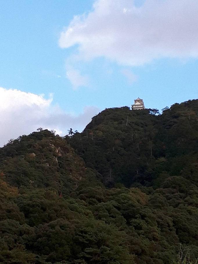 見えます!!山のてっぺん付近にそびえ立つ岐阜城!下から見るとちっさい!