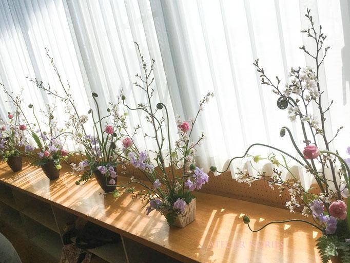 フレッシュフラワークラス 桜の放射線