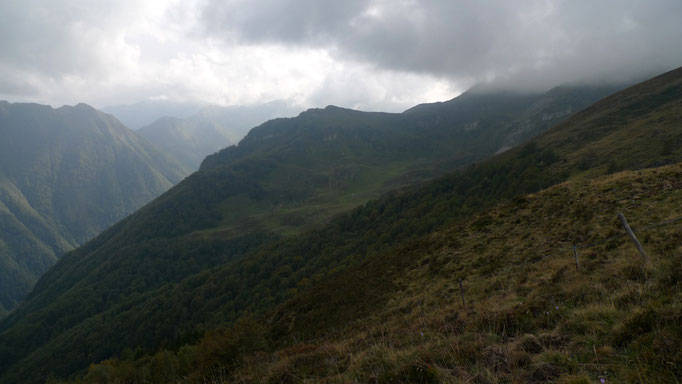 Estive de Soulas-Pyrénées ©Sebastian KUTZLI